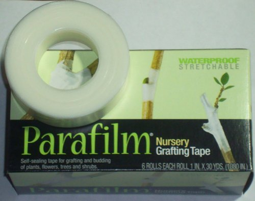 Parafilm Nursery Grafting Tapes - 36 Rolls (6 Retail Boxes; 1''wide X 1080'' Long Per Roll) by Parafilm