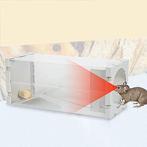 Puerta Humana Animal Jaula Viva, Rata, ratón y más roedores ...