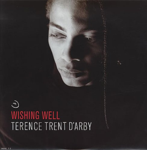 Terence Trent D'Arby / Wishing Well (Wishing Well Dvd)