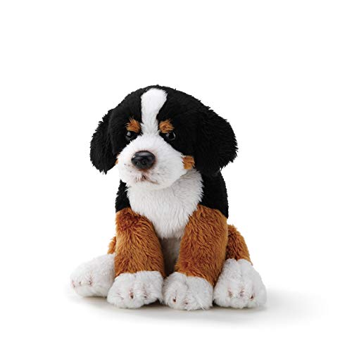 (DEMDACO Bernese Mountain Dog Children's Plush Beanbag Stuffed Animal Toy)