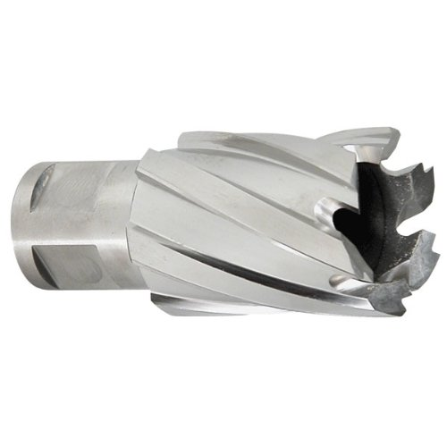 HOUGEN Annular Cutters - Tool Material: HSS Size : 3/4'' 1'' depth of cut [pack of 1]