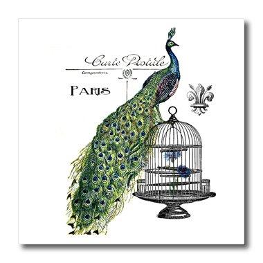 3dRose ht_178821_1 Paris Peacock on Bird Cage Iron on Heat Transfer, 8 by 8