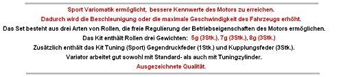 Unbranded Racing VARIOMATIK Riemen Scheibe KIT Set KIT Set f/ür Piaggio TPH 00-09 X R 50 Zylinderkit