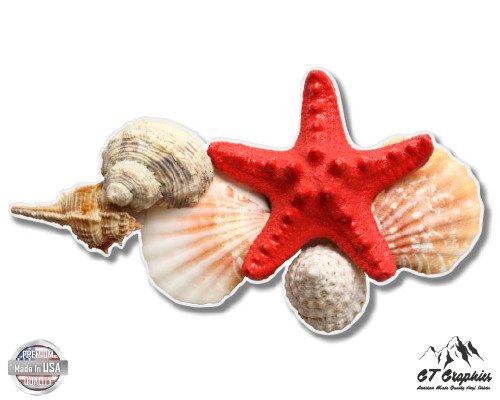 Seashells Collection Ocean Beach Theme - 3 Vinyl Sticker - For Car Laptop I-Pad Phone Helmet Hard Hat - Waterproof Decal