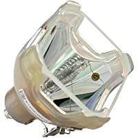 Canon LV-5210, LV-5220; Eiki LC-SB20, LC-SB21, LC-XB26; Christie LX25A Bare Bulb