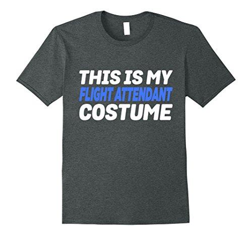 Mens My Flight Attendant Costume Funny Lazy T-Shirt Small Dark (Male Flight Attendant Halloween Costume)
