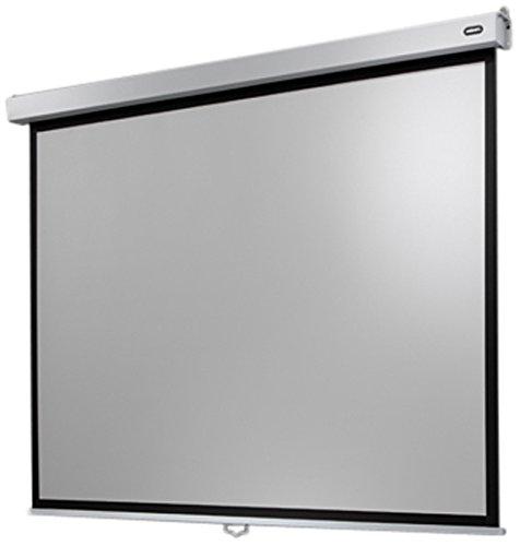 Celexon Rollo-Leinwand Professional Plus | Format 4:3 | Nutzfläche 280 x 210 cm | Beamer-Leinwand geeignet für jeglichen Projektortyp | Auch als Full-HD und 3D-Leinwand einsetzbar | einfache Installation & gute Planlage |