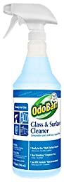 OdoBan 934062-QC12 Ready-to-Use Glass and Surface Cleaner, 32 oz. (Pack of 12)