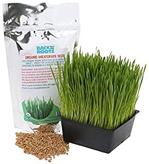 product image for Organic 2lb Cat Wheatgrass Seeds by Back to the Roots – Non-GMO USDA Organic Indoor Growing of Cat Grass Seeds for Natural Hairball Remedy for Cats