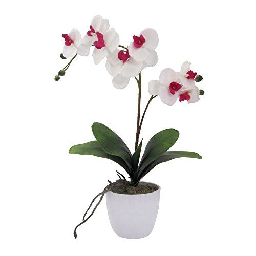 Deutschmade Artificial Flower, Cerise Orchid Phalaenopsis Including White Ceramic Vase, 20