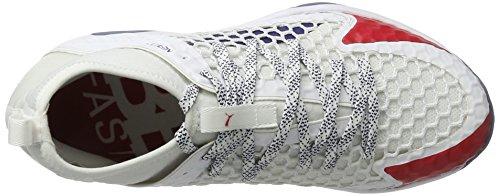 de Fitness Adulte Evospeed Blanc toreador Mixte Chaussures Depths Puma Netfit 1 Indoor White blue acXwq8Y8