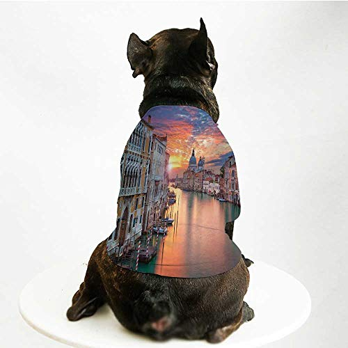 YOLIYANA Cityscape Skin Friendly Pet Suit,Image of Grand Canal in Venice Horizon European Town International Heritage Urban for Pet Dogs,M