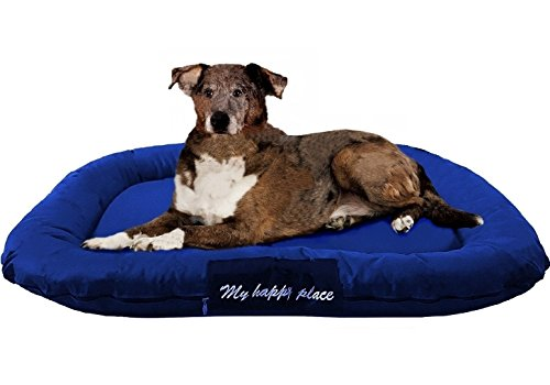 ehomegoods Luxury Orthopedic Solid Memory Foam Pet Bed Pad with External Strong Tough Oxford Waterproof Cover Case for Small to Extra Large dog (54x37 inches, Navy) ()