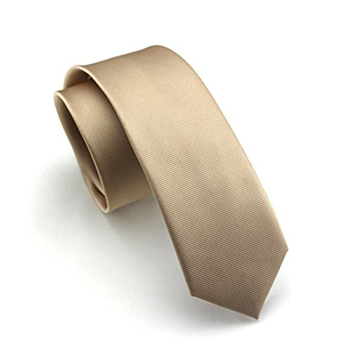 Elviros Mens Eco-friendly Fashion Solid Color Slim Tie 2.4'' (6cm) Champagne