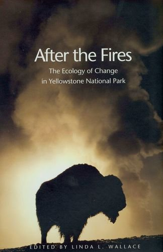 Download After the Fires PDF
