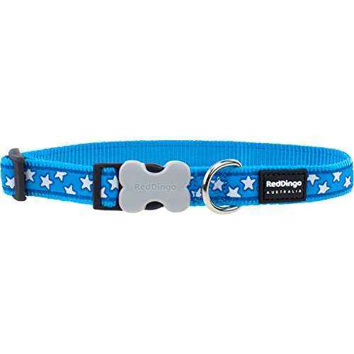 Red Dingo Turquoise with White Stars Dog Collar, Small/12mm