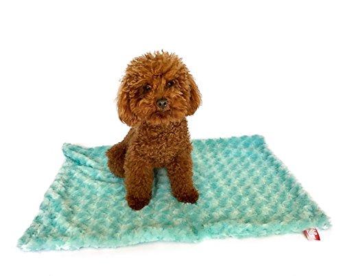 The Dog Squad Rosebud Minkie Binkie Blanket, Small/20″ x 30″, Sea Foam