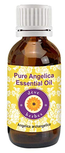 - Deve Herbes Pure Angelica Essential Oil (Angelica archangelica) 100% Natural Therapeutic Grade Steam Distilled 2ml (0.06 oz)