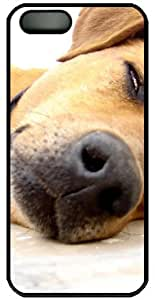 Bored Dog For IPhone 5 5S Case Cover