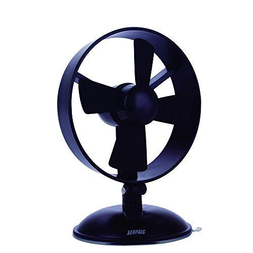 Desk Fan Mini USB Table Fan for Kids(2 Speed,Super Light,Very Safety,5 Inch)(Black) (Usb Fan Oscillating compare prices)