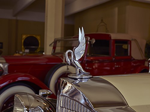 16 x 24 Art Canvas Wrapped Frame Giclee Print A Classic Packard Automobile Hood Ornament at America's Packard Museum an Automotive Museum Located Former Citizens Motorcar Compan 2016 Highsmith 98a