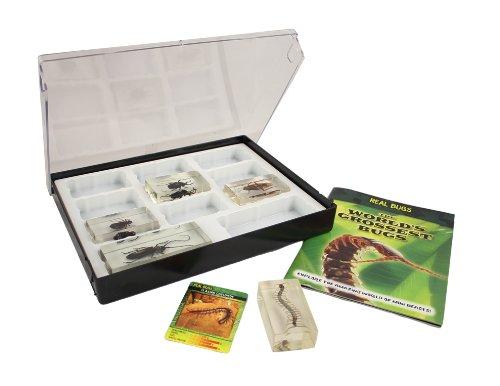 Bug Collector Case #1 Photo #3