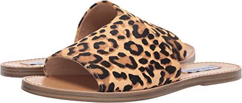 Steve Madden Women's Grace Slide Sandal, Leopard, 8.5 M US
