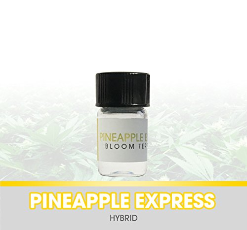 Bloom Terpenes - 1 ml Pineapple Express Strain Specific Terpenes Profile Solution Concentrate (Express Extract)
