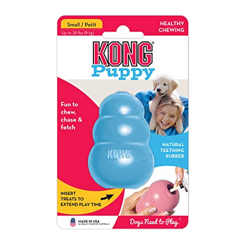 Large Product Image of KONG Puppy Kong Toy, Small, Assorted Pink/Blue