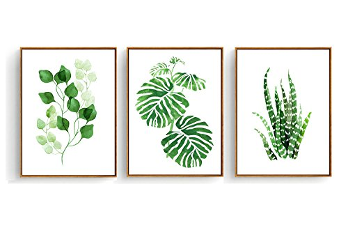 Hepix Tropical Leaves Watercolor Painting Wall Art for Home Decor 13 x 17 inch (Tropical Leaves Set B) by Hepix
