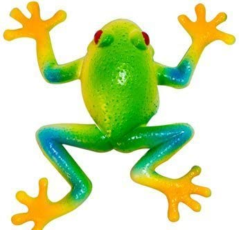 Stretchee Frog the Rain Forest Stretchable Frog by Evriholder stf