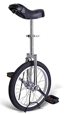 """Kobe Unicycle with Aluminum Wheel Rim 24"""" Silver Chrome"""