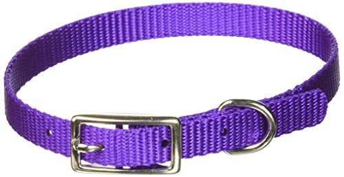 Coastal Pet Products DCP30112PUR Nylon Dog Collar, 3/8 by 12-Inch, Purple