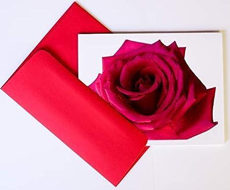 Amazon Com Rosebud Juego De Tarjetas Fotográficas