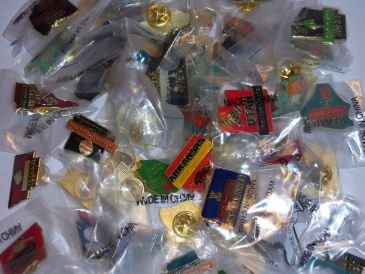 (Lot of 50 State Hat Lapel Pins)