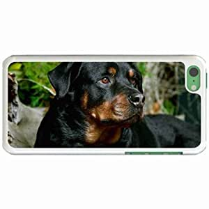 Custom Fashion Design Apple iPhone 4s Back Cover Case Personalized Customized Diy Gifts In Young champ rottweiler White
