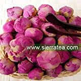 Sierra Tea Dried Tree Peony Buds (Herbal Tea 100g), 牡丹