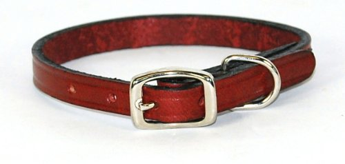 Hamilton 3/8″ x 12″ Creased Burgundy Leather Dog Collar, My Pet Supplies