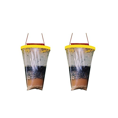 Non-Toxic Disposable Outdoor Fly Traps Fly Catcher-2 Pack