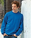 Champion mens Double Dry Action Fleece Crew (S600)