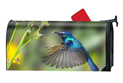 - MAILL Animal Hummingbirds - Mailbox Makeover Cover - Vinyl with Magnetic for Standard Mailbox