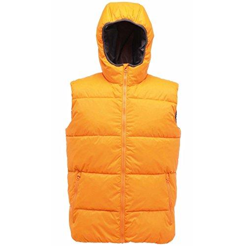 Regatta Geometer Warmloft Bodywarmer, Sun Orange, 3XL
