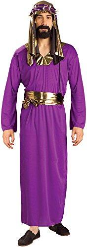 Forum Novelties Biblical Times Costume