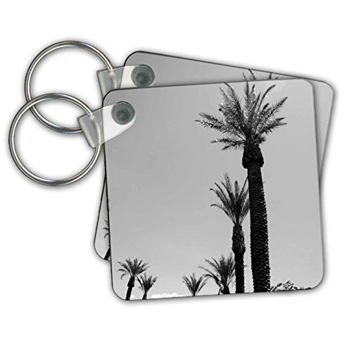 Jos Fauxtographee- Unsaturated Palms - A black and white of some tall palm trees in St. George Utah - Key Chains - set of 2 Key Chains (kc_301794_1)