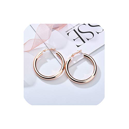 Dangle Earrings For Women Girl Simple Statement Long Drop Earrings Gift,Rose Gold 01