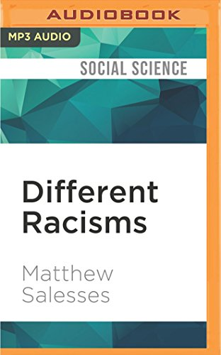 different-racisms-on-stereotypes-the-individual-and-asian-american-masculinity
