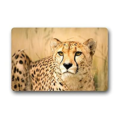 "TSlook Doormat Cool Cheetah/Leopard Indoor/Outdoor/Front Welcome Door Mat(23.6""x15.7"",L x W)"