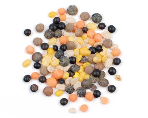 Autumn Blend Lentils, 2 Lb
