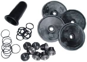 Rittenhouse Hypro D1064 Diaphragm Pump Repair Kit Complete