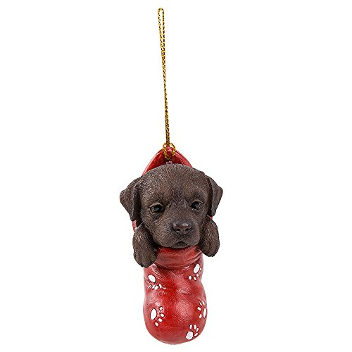 Pacific Giftware Chocolate Brown Labrador Retriever in Holiday Sock Decorative Holiday Festive Christmas Hanging ()
